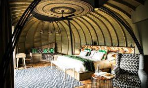 Luxury Gorilla Tours Rwanda
